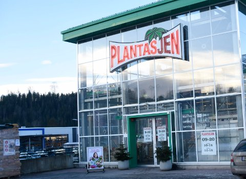 POSITIVT RESULTAT: Plantasjen i Hønefoss er en av butikkene i kjeden som leverer et positivt resultat.