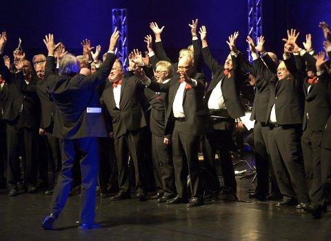 BYENS ELDSTE I FULL VIGØR: Helt siden 1853 har menn fått synge ut i Sandefjords Sangforening. Byens eldste forening er blant de mange korene som skal i aksjon i helga. ARKIVFOTO:  OLAF AKSELSEN