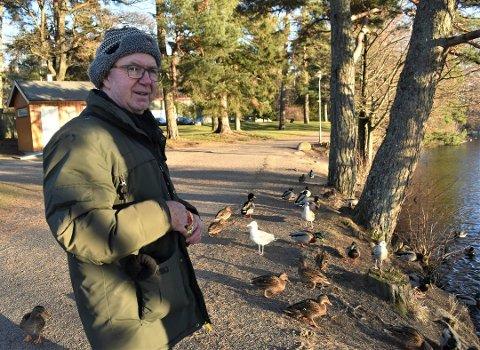 UHØRT: Finn Hauge bor rett ved Bugårdsdammen og er leder i Norsk Ornitologisk Forening i Vestfold. Han syns det er uhørt at noen sannsynligvis har stjålet tamendene som holdt til i dammen. Foto: Ralf Haga