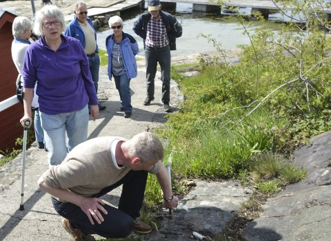 Allaug Wisth (t.v.) vil ha opphevet vedtaket om grenseflyttingen i skjærgårdsparken i 2015. Hun støttes av Knut Aall (sittende) .