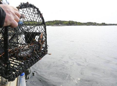 Uansett om du er hobbyfisker eller allerede står i Fiskermantallet, må du registrere deg hos Fiskeridirektoratet.