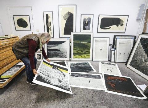 På dypt vann: Grafiker Ola Steen med sin nye bildeserie om naturen. Kattebildene som henger på veggen er historie. – Jeg gikk helt tom i forhold til kattetemaet, sier han. alle foto: stig sandmo