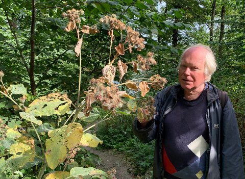 SLÅR ALARM: Professor Klaus Høiland sier han blir trist over utviklingen på Bygdøy.