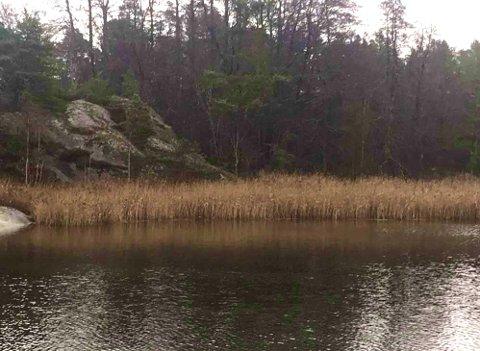 Bildet er fra Saulekilen på Skåtøy - eller Sjømonn på Bråtøy, som innsenderen mener.