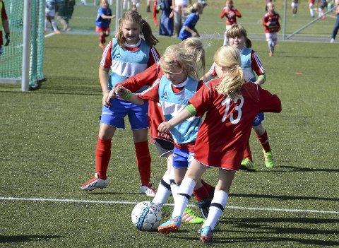 REKORD: Med 130 lag påmeldt blir årets Skrim Cup rekordstor. Her er  KIF Åsen Angry Birds lag 2 og Svene J9 i akjson under fjorårets turnering.