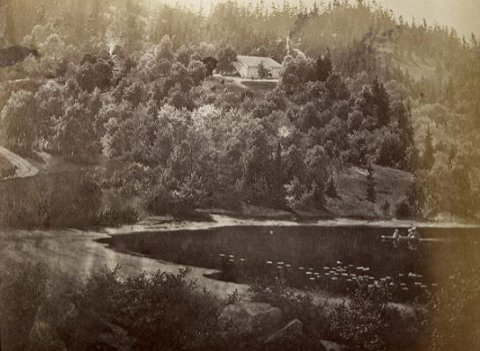 VED NØKLEVANN: Sarabråten ligger på en høyde ved Nøklevann i Østmarka. Her et bilde fra cirka 1870, utlånt av Christine Heftye, oldebarn av Thomas Johanessen Heftye.