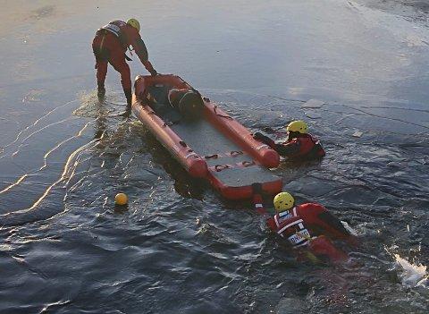 Brannvesenet fikk tak i rådyret rundt 600 meter ute i Kongens Dam.