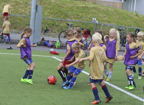 ALARMEN HAR GÅTT: Norges idrettsforbund har sendt ut bekymringsmelding om stupende medlemstall i idrettslagene. I Porsgrunn er det dobbelt så stor nedgang som i resten av landet.