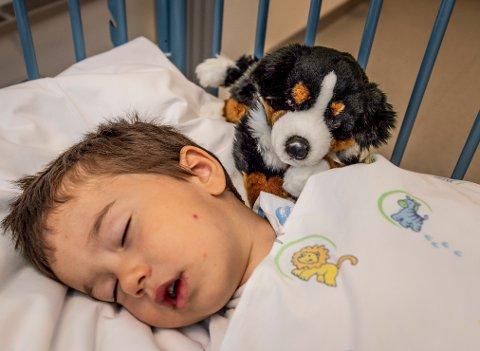 ALLTID MED: Når lille Emin våkner etter operasjonen, venter kosedyret tålmodig i senga.
