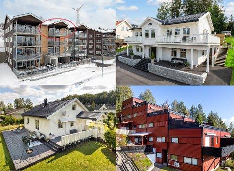 HAR BYTTET EIER: Disse eiendommene i Konglefaret (øverst til venstre), Haugkollen, Viulveien og Oppenåsen er solgt.