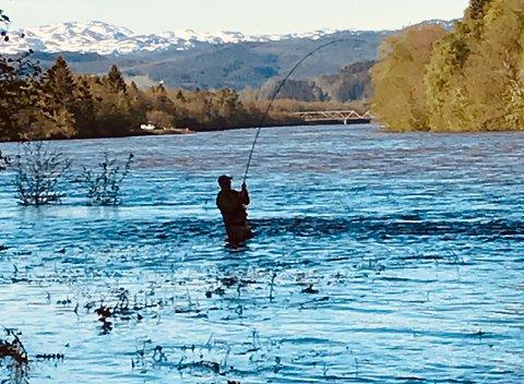 Fiske i Gaula, sesongstarten 2020. Det understrekes at bildet på ingen måte har noe med selve saken å gjøre.