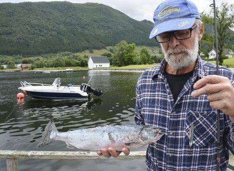 Hans Thunold henta opp ein pukkellaks frå elveosen i Omvikdalselva i juli. (Arkivfoto).