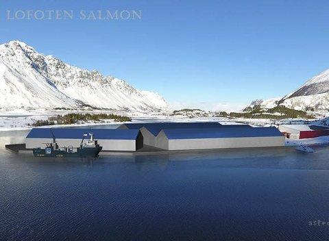 SKJÆR I SJØEN: Her fra en tidlig skisse over hvordan en utbygging på Landfastøya på Kleppstad kan se ut.