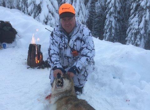 ULV: Lederen for fellingslaget i Åmot, Arne Sveen, har fått flere trusler etter ulvejakten startet. (Foto: Privat)