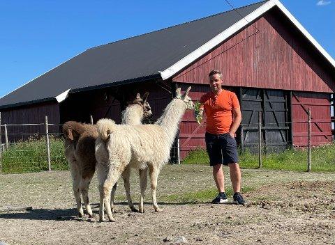 Nytt hjem: De to lamaene har slått seg til ro på gården hos Stein Borud i Båstad.
