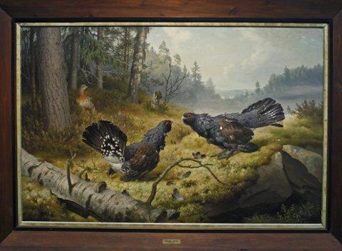 Tåkelandskapet i Ferdinand von Wrights berømte maleri er fra hans hjemtrakter i Haminanlaks øst i Finland, mens tiurene ganske sikkert er malt etter modell slik de tre brødrene hadde for vane: De skjøt fuglene og stoppet dem ut.Foto: Hallgeir B. Skjelstad