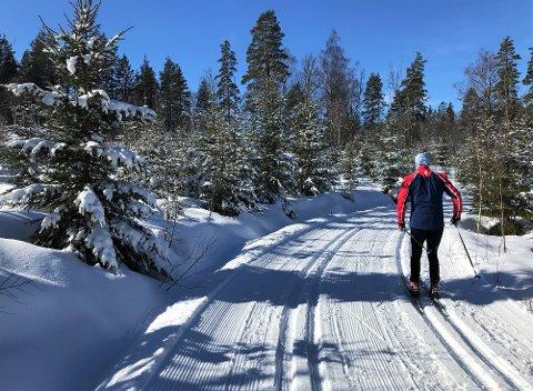 VINTERLIG: Fullt så idyllisk som dette blir det nok ikke, men finner du fram skiene raskt, vil det ifølge meteorologen være mulig å ta seg en skitur i løpet av lørdagen. Søndag går nedbøren over til regn.