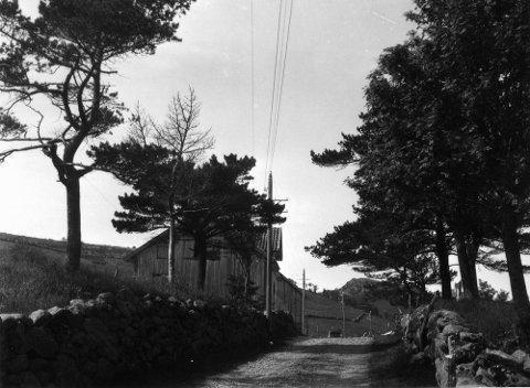 ÅLGÅRDSBANEN?: – Vi tror dette bildet er tatt et sted langs Ålgårdsbanen rundt 1925. Det kan være et sted etter Foss-Eikeland men før vi kommer fram til Ålgård. Kan noen av leserne hjelpe?