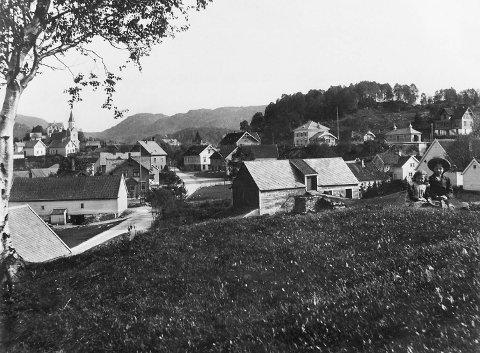 Dette bildet viser Nesttun sentrum mellom 1910 og 1920. I bakkant ses stasjonsbygningen på Nesttun stasjon og til venstre ligger Birkeland kirke. Midt på bildet går Nesttunvegen.