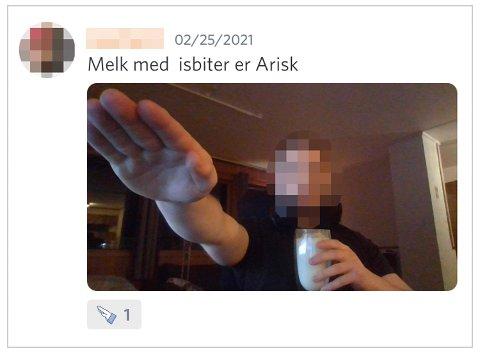 En 17-åring fra Nordland har postet dette bildet av seg selv i Alliansens server.
