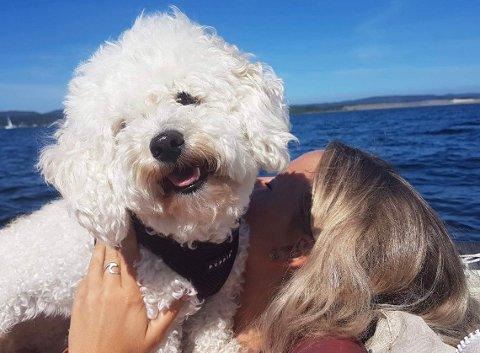 SKYGGE OG VANN: Her koser bichonen Emma seg på båttur i Holmestrandfjorden. Da er det viktig med tilgang til skygge og vann. (Illustrasjonsfoto)