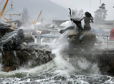 RIMELIG HEFTIG: Det blåste kraftig i Follo søndag, og dette fikk konsekvenser mange steder.