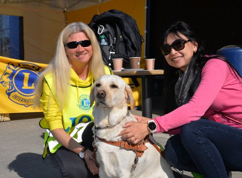 – Mange tror at hundene går på autopilot, men det gjør de ikke. Jeg må vite hvor jeg skal, for at hunden skal vite hvor hun skal gå, sier svaksynte Elin Hansen sammen med førerhunden Kira og hundetrener Yasuno Kurata fra Lions Førerhundskole i Oslo.