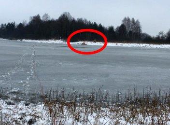 Gjennom isen: Rådyret får her hjelp av brannvesenet. Foto: Pia Fredriksen