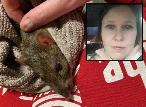 NYTT KJÆLEDYR: Hilde Marie Hamrebø (41) og familien hennes tok inn en rotte som ble funnet forlatt ved Varsjøen.