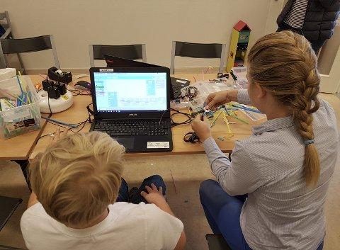ROBOTINSEKTER PÅ BIBLIOTEKET: Slemmestad bibliotek inviterer barn og unge til å komme og lage robotinsekter denne helgen. Foto: Innsendt