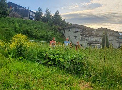 I det svært høye gresset finner vi, noe gjemt; (f.v) Petter Hval Frydenheim, Cicilia H. Frydenheim, Mille H. Frydenheim, John Inge Haukaråsen, Tobias Haukaråsen og Oliver Haukaråsen.