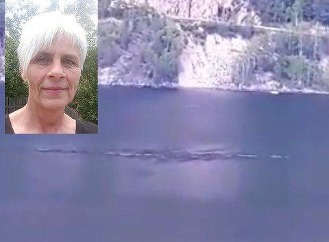 SJØORM: Anita Rulnes (innfelt) mener hun har filmet sjøormen i Seljordsvannet.