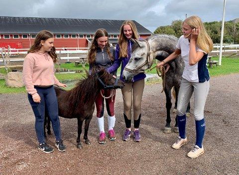 FLERE BURDE PRØVE:  Talina Muri, Ida Kolstø, Rebecca With og Lisa Bunes tror det er mange fordommer blant gutter når det gjelder hest, og at det er derfor så få gutter i Norge holder på med det.