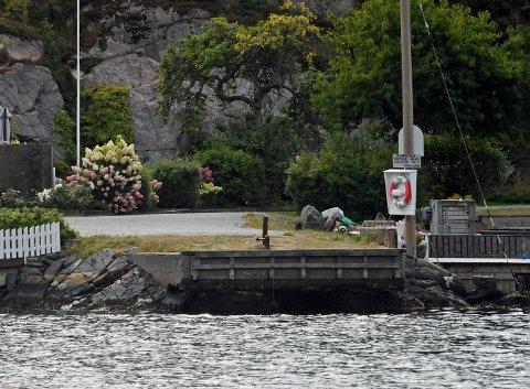 «Blindtarmen» - den kommunale brygga i Gjerdalen forfaller og er en fare for allmennheten. Nå skal havnevesenet se nærmere på brygga. Foto : Skibsaksjeselskapet Hesvik