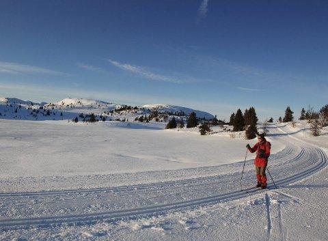 Vinterleg flott: Turen rundt Hollastølsfjellet var ei herleg oppleving, på finaste januardagen i 2020.