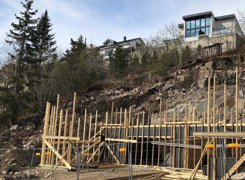 SELGES: Eiendommen Ida Cathrine Ruud (SV) lurte på om det gikk å sette mikrohus på skogområdet til venstre i bildet. Tomten ligger på Tumyrhaugen, der det er bygge- og delingsforbud.
