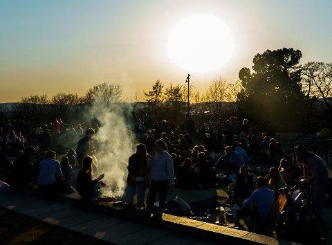 STORE SAMLINGER: Mange unge forventes å feste i byens friluftsområder i helgen. Avbildet er parken i St. Hanshaugen en lørdag i april i år.