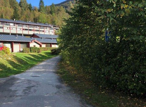 GODT GØYMT: Gang- og sykkelvegskiltet i bakken opp til Vieåsen er vanskeleg å sjå.