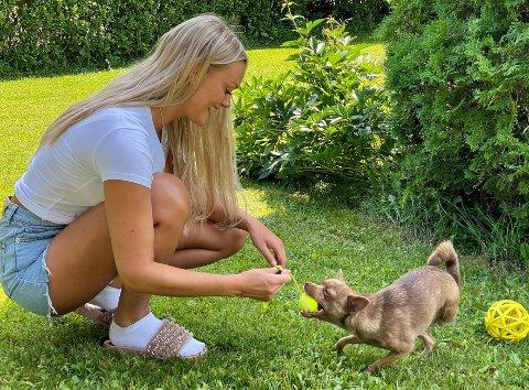 LEKEN: Hailey er sterkere enn noensinne etter amputasjonen i vinter. Eieren Lena Johansen Aaserud Johansen er glad på hundens vegne.