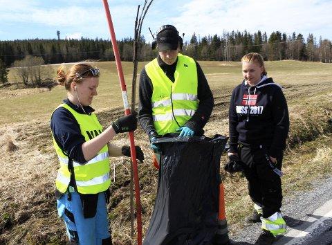 Vårrengjøring: Sofie Hansen, Aksel Reinåmo og Eline Hansen plukker søppel langs Markaveien i Vefsn.Foto: Stine Skipnes