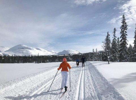EN NY SKITUR: Den siste uka har vi kommet med mange gode forslag til aktiviteter, og det ikke for sent å ta en skitur på Sjåmoen.