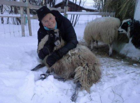 GODT DYREHOLD: Jorun Jordsletten passer på å ha et godt dyrehold, og tar seg tid til å prate litt med sauene.