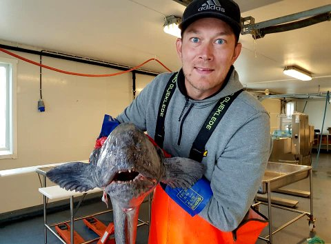 NY HVERDAG: Daniel Forfang har landet på begge beina i sjømatnæringen som daglig leder for Frøya Gourmet.