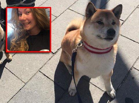 VIL HJELPE: Hunden Ototto trenger en hofteoperasjon. Karine Tofsland gjør det hun kan for å samle inn penger slik at det kan skje.