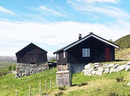 STOPP RIVINGEN: Setrene i Vesllie skal etter planen rives den 5. august.