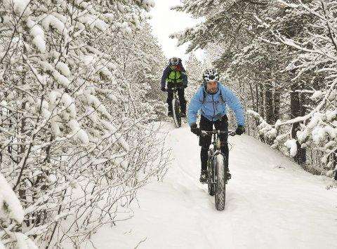 VOKSENDE INTERESSE: Fatbikesykling er blitt mer og mer vanlig i vinter-Finnmark. Blant annet kjører Nordlysbyen sykkel en egen fatbike-cup om vinteren. Skaidi Fatbike venter flere syklister fra Alta på startstreken under årets ritt.