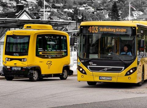 BUSS: Antall bussreiser i 2019 økte i Kongsberg by, mens det var nedgang for rutene i Numedal. Bussruten til høyre på bildet, nummer 403 - hadde for øvrig en økning fra ca 65.000 reiser i 2018 til over 69.000 reiser i 2019.