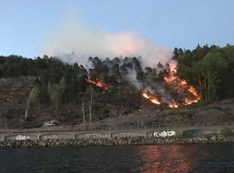 SKOGBRANN: Skogbrannen ved Røysåsen startet i et område hvor det utføres arbeid for Bane Nor. Politiet har ikke kommet fram til en konkret brannårsak, men saken er fortsatt under etterforskning.