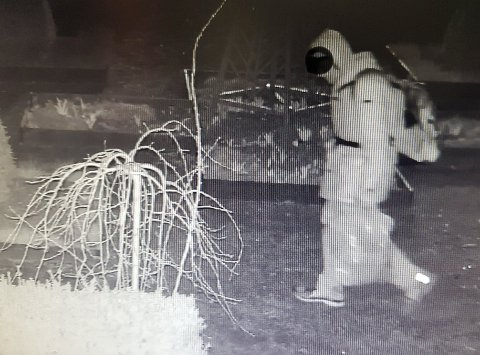 Historielaget mener dette er mannen som står bak tyveriet. Bildet er fra overvåkingskamera natt til fredag i forrige uke.