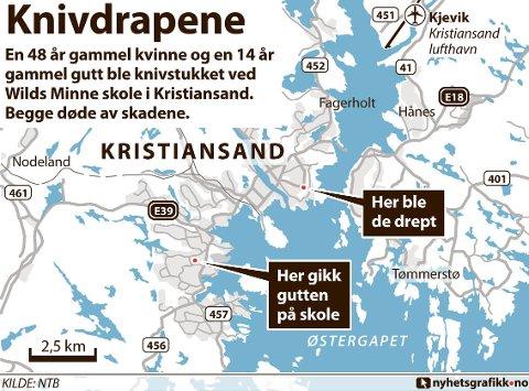 En 48 år gammel kvinne og en 14 år gammel gutt ble knivstukket ved Wilds Minne skole i Kristiansand. Begge døde av skadene.
